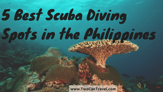 Best Scuba Diving Spots in the Philippines