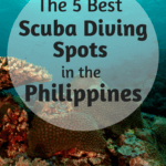 5 of the Best Scuba Diving Spots in the Philippines
